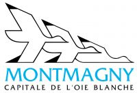 Ville Montmagny